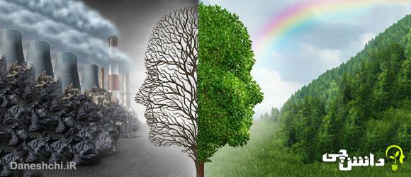 نقش گیاهان در کاهش آلودگی هوا