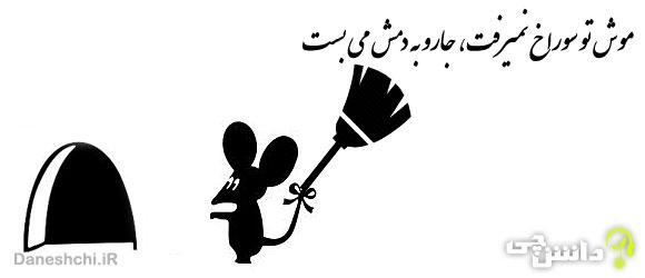 موش تو سوراخ نمیرفت، جارو به دمش می بست